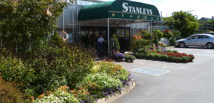 stanleys greenhouse